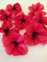 Tissue Paper Oriental Poppies